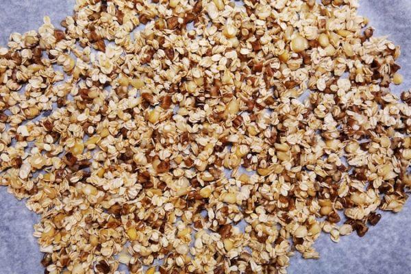 domaci-granola-recept-351A2DF3E-3BA9-1A36-76F8-4AC87637D9C4.jpg