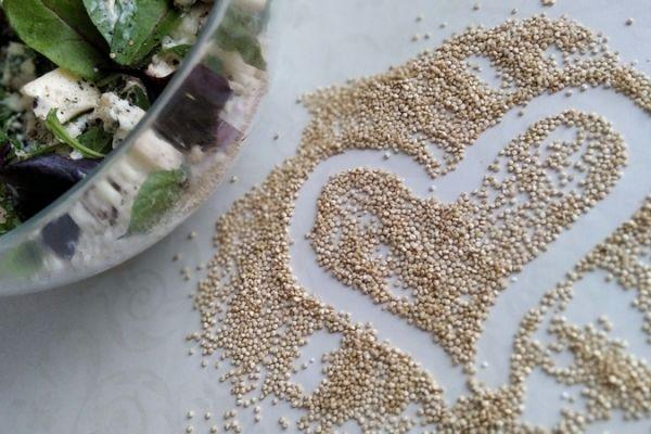 salat-quinoa-niva-obr-50D304B2F-F3C0-B46C-78AF-20DF35D2EB86.jpg